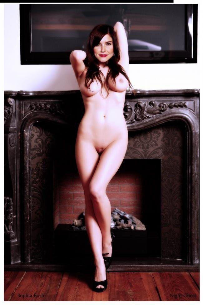 tube8 Free Nude Celebrities Sophia Bush