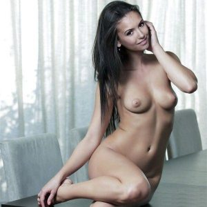 tube8 Nina Agdal Nude Topless Sexy Photos